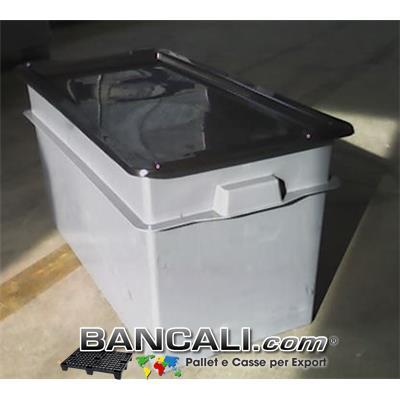 BOX CASSA per l'Export  da 100 Litri  cm 40x80 h.41 con COPERCHIO. Cassa di  Plastica Lunga e Stretta.  Kg. 4,4