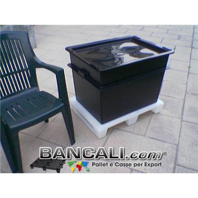 Export Box Inseribile 60x80 h.55 cm Cassa di Plastica  Litri 200  Fornita con Coperchio. Pareti completamente chiuse. Dotato di maniglie esterne per la presa Kg 9,8
